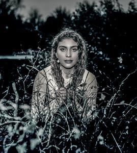Alyssa Cross--3