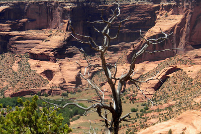 2009 Navajo Mission - Canyon de Chelly
