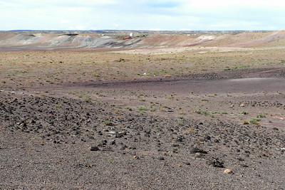 2009 Navajo Mission - Field of Petfired Wood