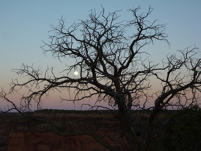 Canyon de Chelly-50