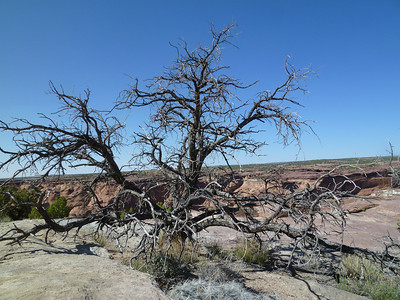 Canyon de Chelly-24