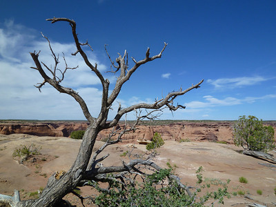 Canyon de Chelly-39