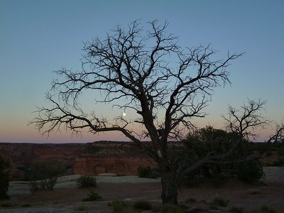 Canyon de Chelly-49
