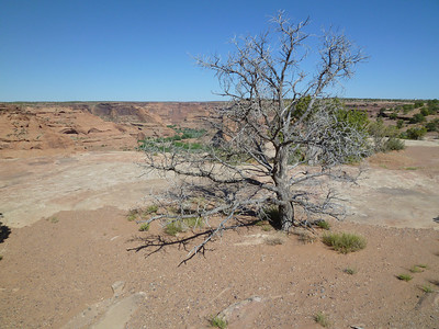 Canyon de Chelly-26