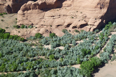 Canyon de Chelly-20