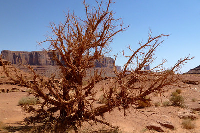 Navajo Mission - 2012 - Monument Valley