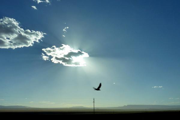 Navajo Mission 2013