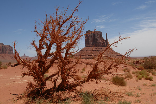 Trip - Monument Valley