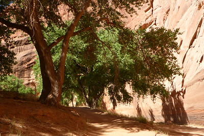 Mission to the Navajo Nation - Chinle, Arizona - June 10-23, 2017 - Sponsored by the Diocese of Joliet - Canyon de Chelly Tour