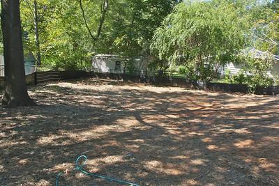 Great back yard