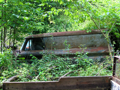 This truck is being reclaimed by the forest