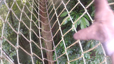 18_rope ladder