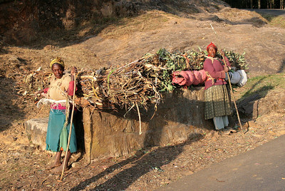 Note that the fuelwood woman on the left is barefoot!