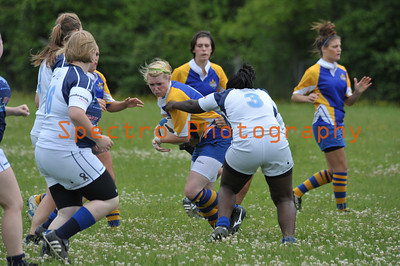 Mississauga Blues Rugby