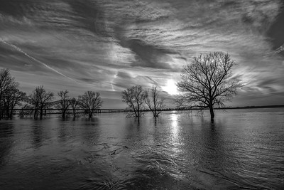 Mississippi River Rising