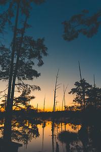 Refuge Silhouette