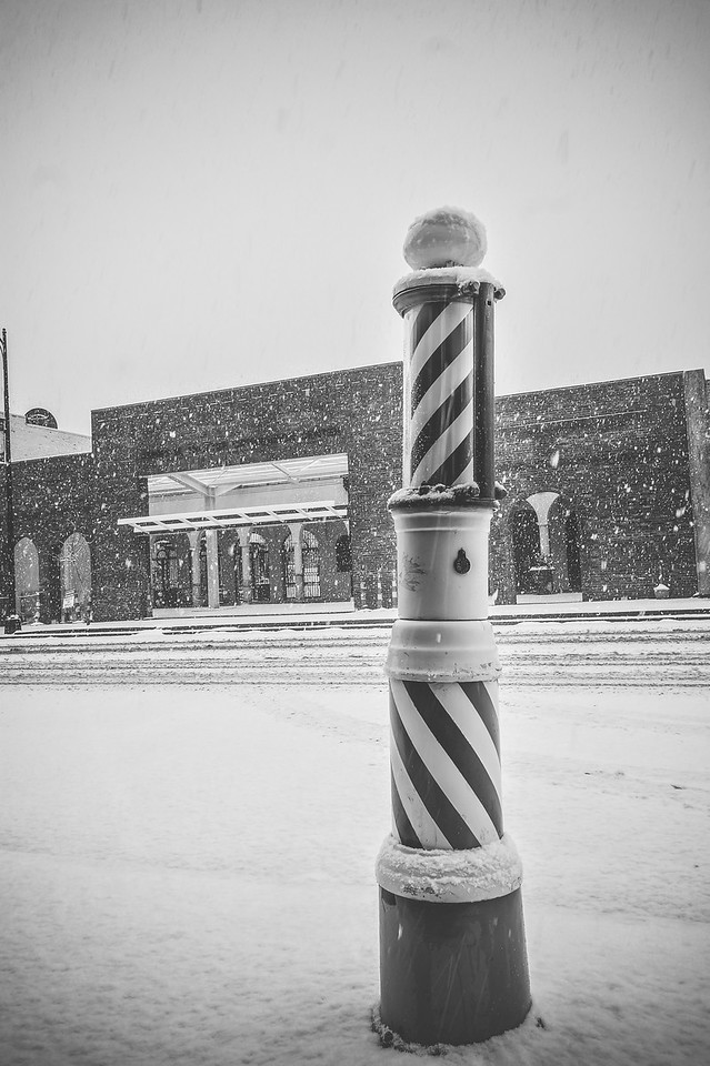 Barber Pole in the Snow