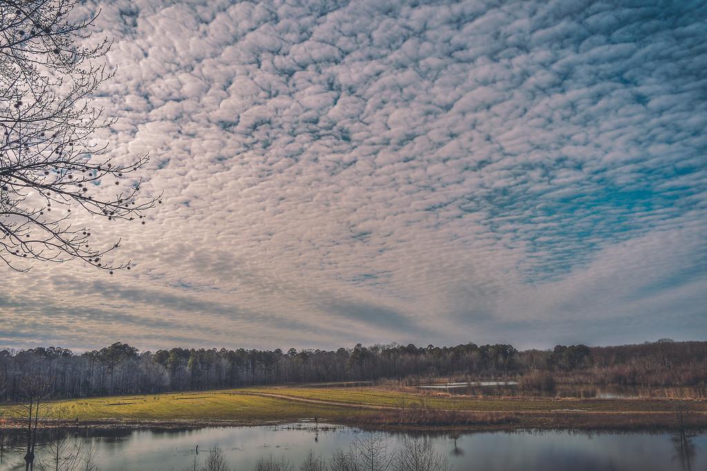 Goose Overlook