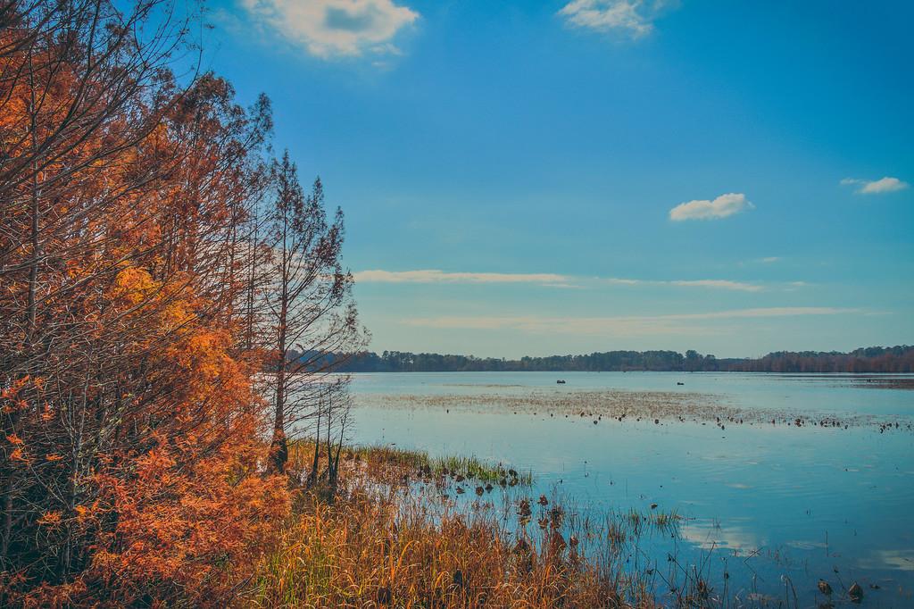 Fall at Bluff Lake