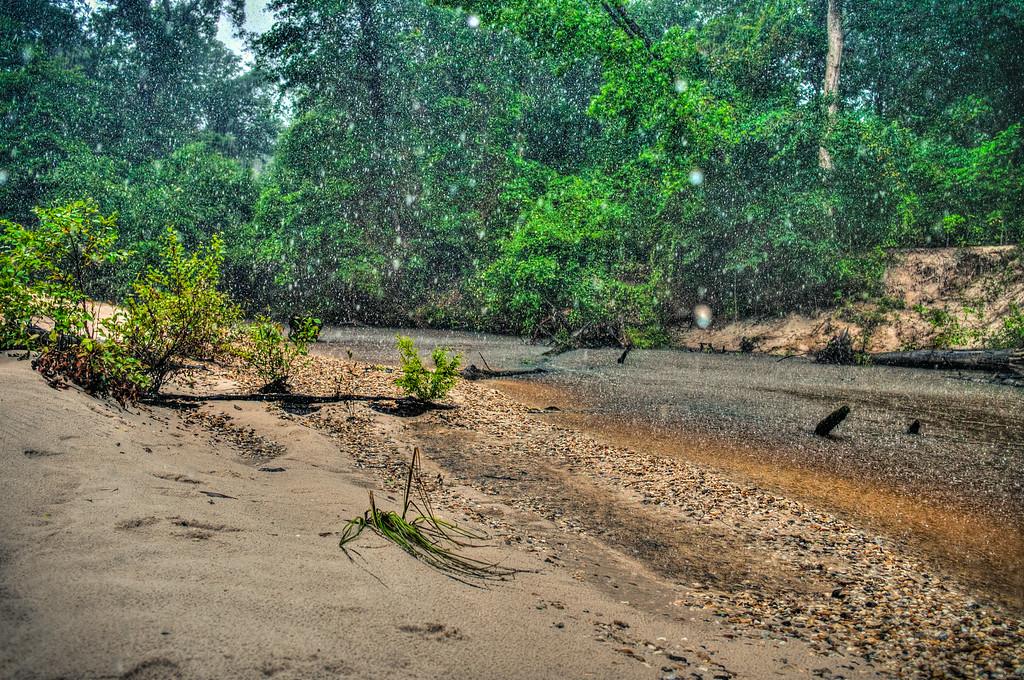 Creek Rain