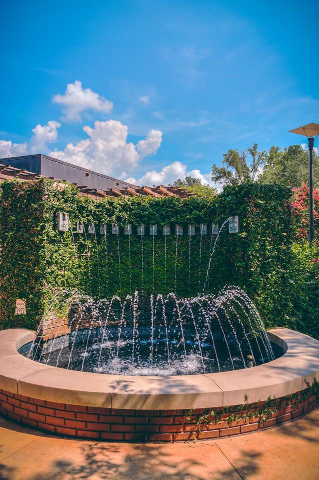 Fountain Flow