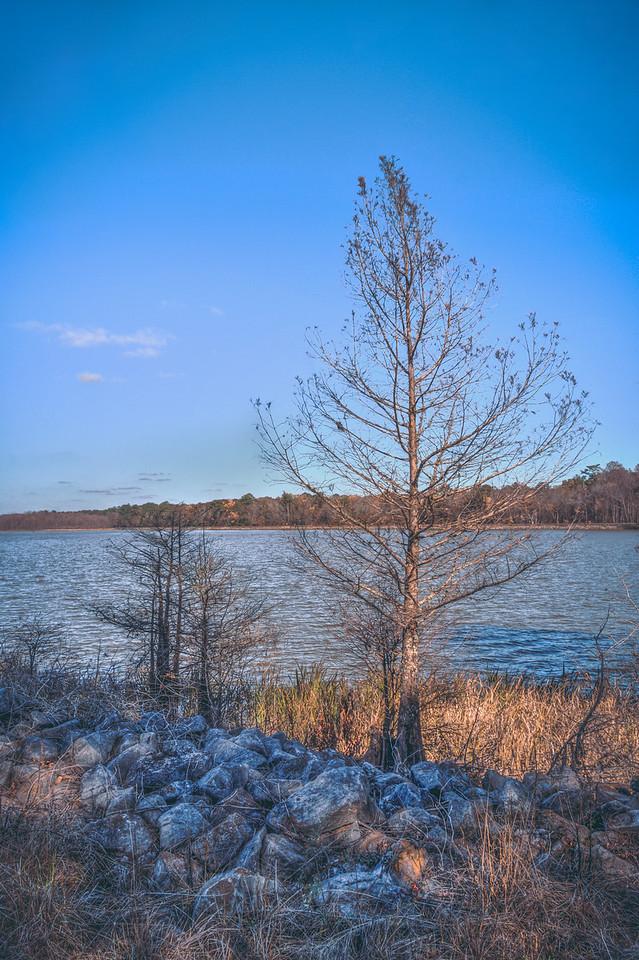 Refuge Lake Shore