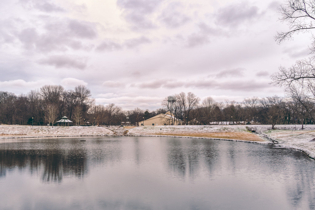 Snow by the Pond
