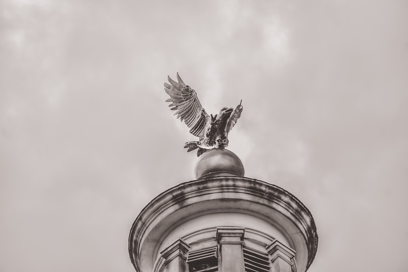 Courthouse Eagle