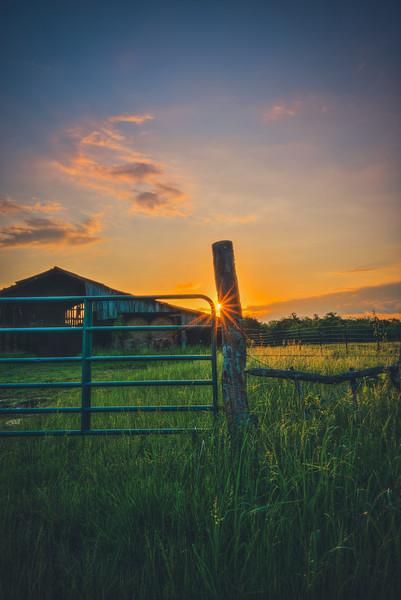 Shiny Fence Post