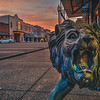 Small Town Lion