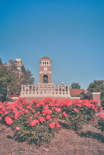 Peddle Bell Tower