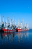 Colorful fishing tawlers docked in the harbor near Biloxi, Mississippi, USA, America.