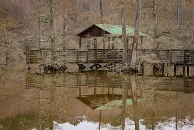 Noxubee Swamp