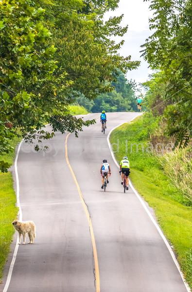 Missouri - BikeMO 2015 - C4-0118 - 72 ppi-2