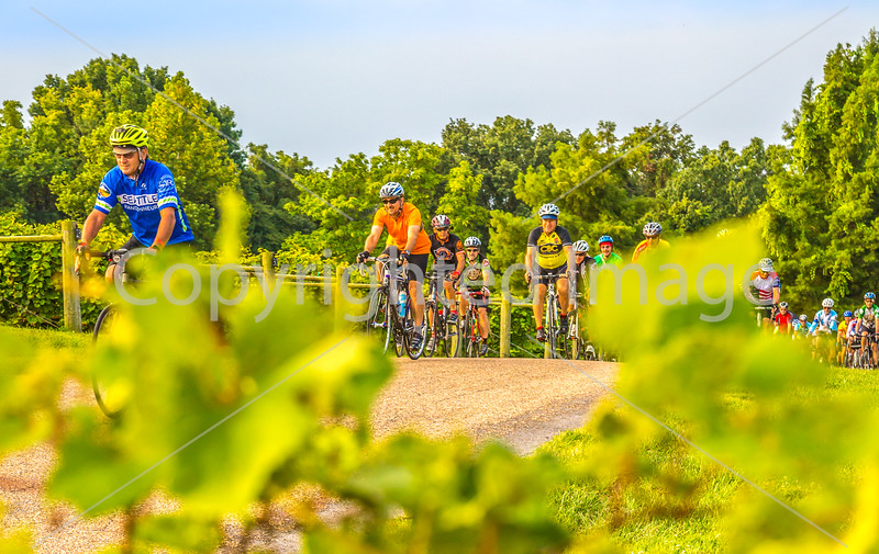Missouri - BikeMO 2015 - C3-0012 - 72 ppi-2