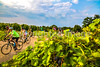 Missouri - BikeMO 2015 - C3-0020 - 72 ppi