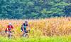 Missouri - BikeMO 2015 - C4-0316 - 72 ppi-3