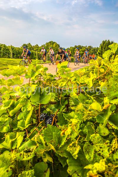 Missouri - BikeMO 2015 - C3-0033 - 72 ppi