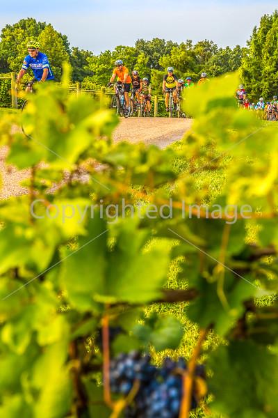 Missouri - BikeMO 2015 - C3-0012 - 72 ppi