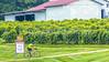 Missouri - BikeMO 2015 - C4-0509 - 72 ppi