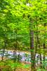 Missouri - Tour de Wildwood - Rockwoods Reservation - C2-0047 - 72 ppi