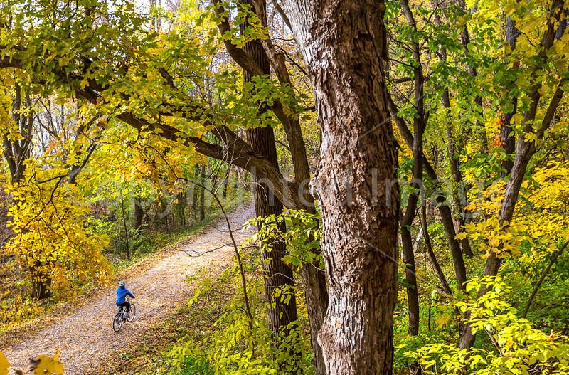 Katy Trail near Rocheport, MO - C2-0095 - 72 ppi-3