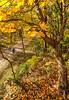 Katy Trail near Rocheport, MO - C2-0013 - 72 ppi-2