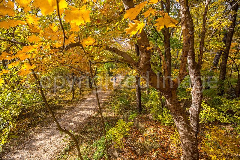 Katy Trail near Rocheport, MO - C2-0017 - 72 ppi