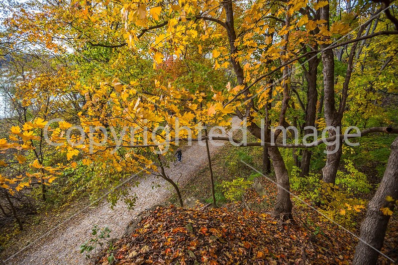 Katy Trail near Rocheport, MO - C1-0415 - 72 ppi