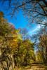 Katy Trail near Rocheport, MO - C1-0001 - 72 ppi