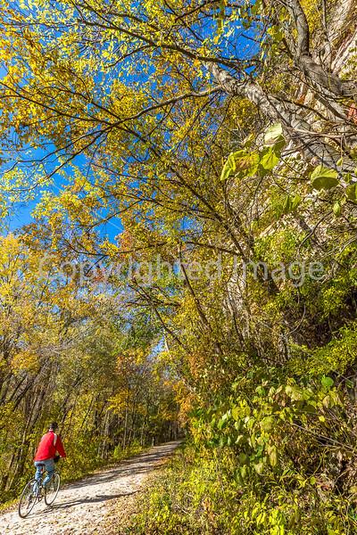 Katy Trail near Rocheport, MO - C1-0116 - 72 ppi