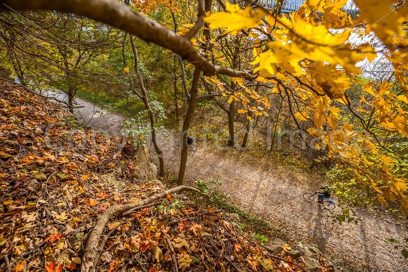Katy Trail near Rocheport, MO - C2-0051 - 72 ppi