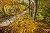 Katy Trail near Rocheport, MO - C2-0073 - 72 ppi