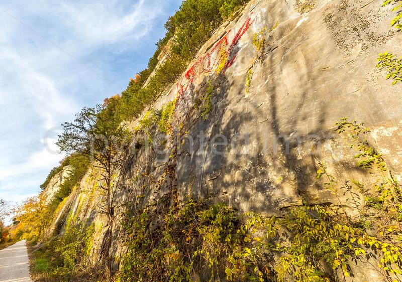 Katy Trail near Rocheport, MO - C2-0224 - 72 ppi